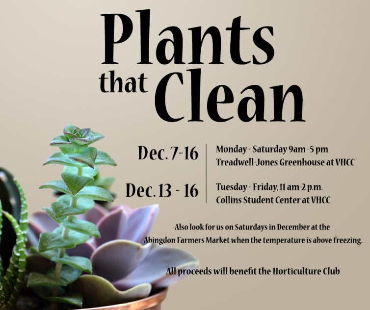 Plants that Clean Spring 2017 Sale